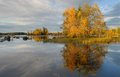 Beatuful autumn landscape in sweden Stock Images