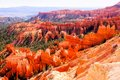 Beau bryce canyon national park Images libres de droits