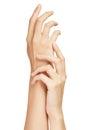Beau concept de la femelle Hands.Manicure Photographie stock libre de droits