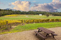 Beauriful Vineyard in Yarra Valley, Australia in autumn Royalty Free Stock Photo