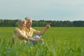Beauteous old couple in the middle of the field Royalty Free Stock Images