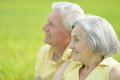 Beauteous old couple in the middle of the field Stock Images
