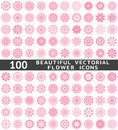 Beautiful abstract flower icons vector illustration for your pretty chic design set of pink natural shapes different romantic Stock Photography