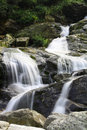 Beautiful alpine brook Royalty Free Stock Photography
