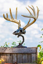 Beautiful antler mount made from silver and chains Royalty Free Stock Image