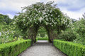 Beautiful Arch Formed By Flowers