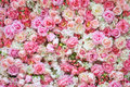 Beautiful artificial flowers for background. Royalty Free Stock Photo