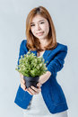 Beautiful asian gril hold little tree pot Royalty Free Stock Photo