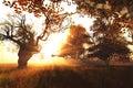 Beautiful Autumn Forest Nature Scene 3D render 1