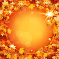 Beautiful autumn frame with maple leaves and circle Stock Image