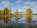 Beautiful autumn landscape in sweden Stock Photos