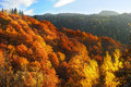 Beautiful autumn mountains Stock Images