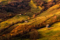 A beautiful autumn rural landscape with lonely houses, sunny hills and small horse. Carpathian rolling landscape on sunset in autu Royalty Free Stock Photo