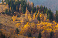 Beautiful autumn scenery in a remote mountain location Royalty Free Stock Photography