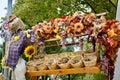 Beautiful autumn theme Royalty Free Stock Photo