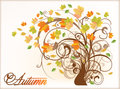Beautiful autumn tree vector illustration Stock Photography