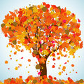 Beautiful autumn tree for your design. EPS 8 Stock Photo
