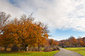 Beautiful autumn trees in urbasa mountains navarra spain and rural road Royalty Free Stock Images