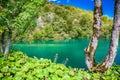 Azure lake in Plitvice Royalty Free Stock Photo