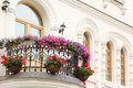 Beautiful balcony with flowers and windows of house Royalty Free Stock Photography