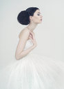 Beautiful ballerina portrait of elegant on white background Royalty Free Stock Photography