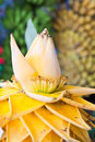 Beautiful banana flower Stock Photography