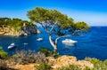 Beautiful bay of Portals Vells on Majorca Spain Mediterranean Sea Royalty Free Stock Photo