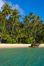 Beautiful beach and tropical sea thailand with exotic palm trees on the sand Stock Photos