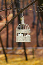 Beautiful bird cage in autumn forest garden party decoration Royalty Free Stock Photography