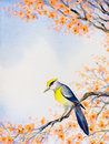 Beautiful bird on flowering branch. Watercolor painting Royalty Free Stock Photo