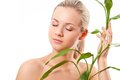 Beautiful blond touches bamboo Royalty Free Stock Image