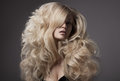 Beautiful blond woman curly long hair portrait of Royalty Free Stock Photo