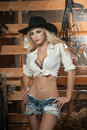 Beautiful blonde girl with country look, indoors shot in stable, rustic style. Attractive woman with black cowboy hat, denim short