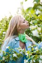 Beautiful blonde girl in the garden Royalty Free Stock Images