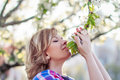 Beautiful blonde woman at spring smelling flowers tree Stock Photos