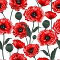 Beautiful blooming red poppy flowers seamless pattern illustration vector ,Design for fashion fabric,web,wallpaper,wrapping and