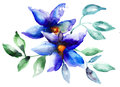 Beautiful blue flowers watercolor painting Stock Image
