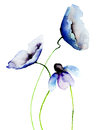 Beautiful blue flowers watercolor painting Royalty Free Stock Photo