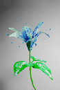 Beautiful blue lily flower made of bursting paint on a grey background Stock Photography