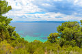 Beautiful blue sea behind conifers against cloudy sky Royalty Free Stock Image