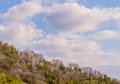 Beautiful blue sky with white puffy clouds Royalty Free Stock Photo