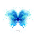 Beautiful blue watercolor abstract translucent butterfly on the white background. Royalty Free Stock Photo