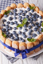 Beautiful blueberry cake charlotte on a plate macro . Vertical Royalty Free Stock Photo