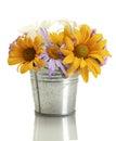 Beautiful bouquet Royalty Free Stock Photo