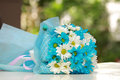 Beautiful bouquet of bright blue and white flowers Royalty Free Stock Photo