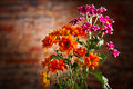 Beautiful bouquet of chrysanthemums over brick wall Royalty Free Stock Photo