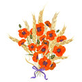 Beautiful bouquet of poppies and wheat spikelets, tied with silk ribbon Royalty Free Stock Photo