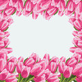 Beautiful bouquet of tulips floral background greeting card or invitation Royalty Free Stock Photography