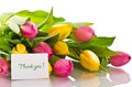 Beautiful bouquet of tulips on a white background Stock Image