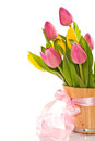 Beautiful bouquet of tulips on a white background Stock Photos